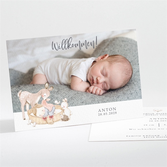 Geburtskarte Freundschaft réf.N111241