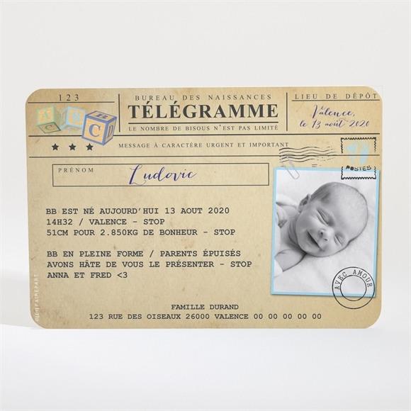 Faire-part naissance Mon petit Passeport réf.N11015
