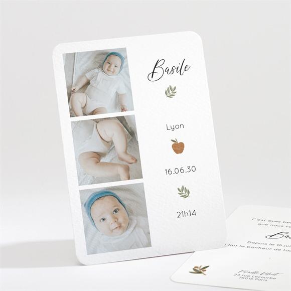 Faire-part naissance Présentation réf.N211368