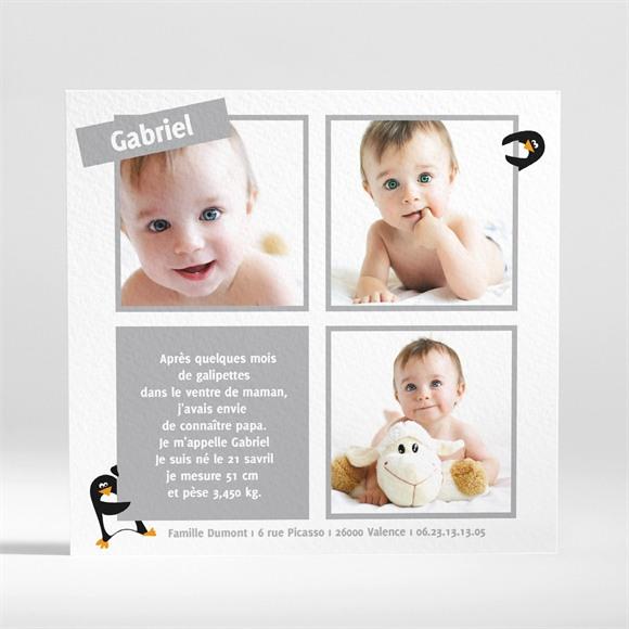 Faire-part naissance Notre Petit Pingouin réf.N31001