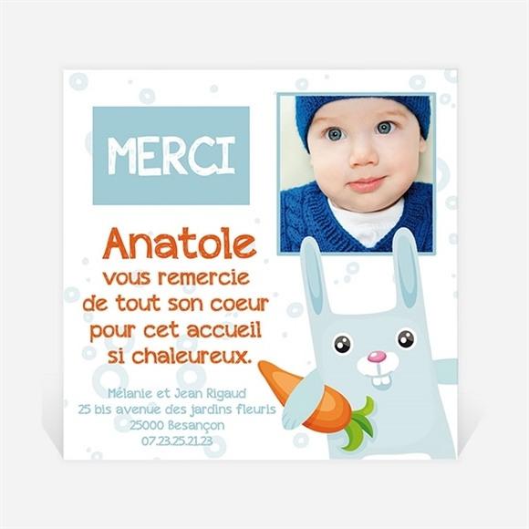 Remerciement naissance Lapin carotte réf.N30068