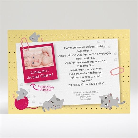 Faire-part naissance Petites souris réf.N14008
