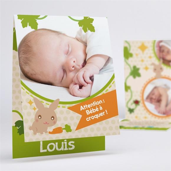 Faire-part naissance Lapin et carotte mignon réf.N50127