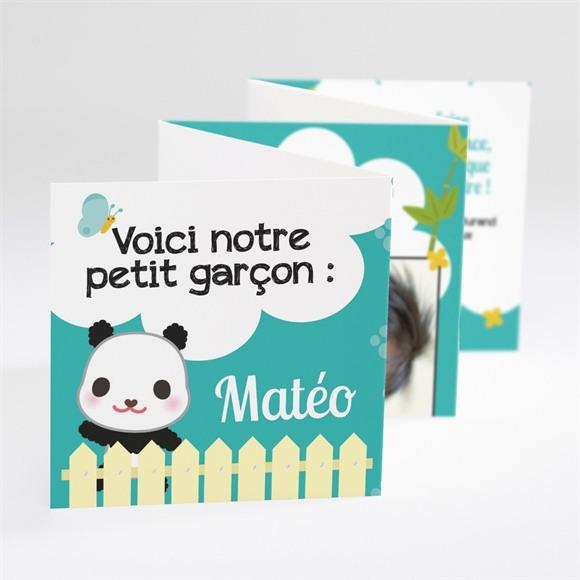 Faire-part naissance Notre Petit Panda réf.N80020