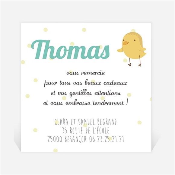 Remerciement naissance Petits Oiseaux réf.N300168