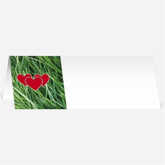 Marque-place mariage Notre Terrain de Football réf.N440248