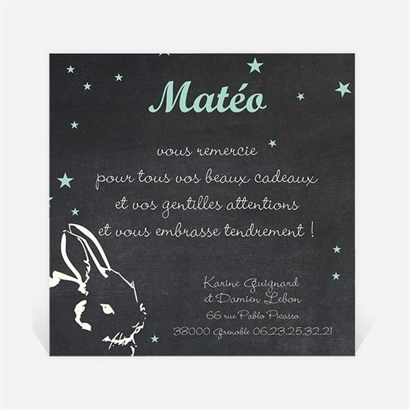 Remerciement naissance Petit Lapin a pointé son nez ! réf.N300199