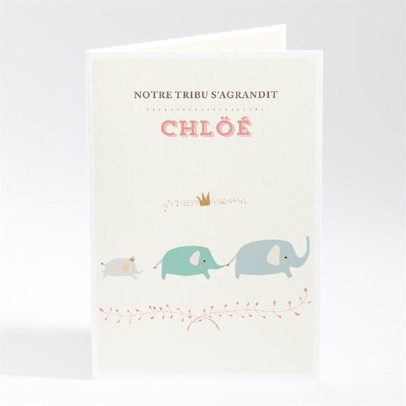 Faire-part naissance Nos petits éléphants réf.N401314