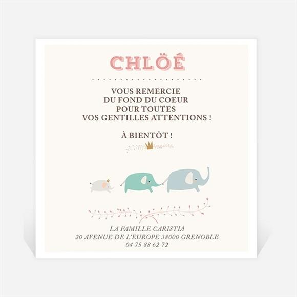 Remerciement naissance Nos petits éléphants réf.N300204