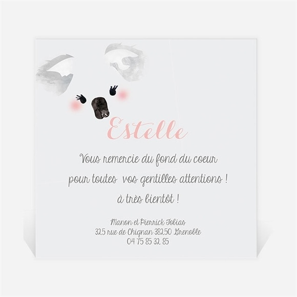 Remerciement naissance Petit Panda Naissance réf.N300230