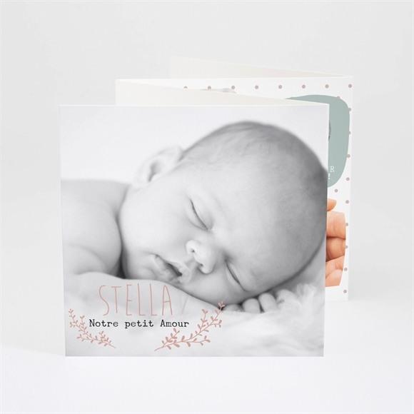 Faire-part naissance Notre petit Amour réf.N83006