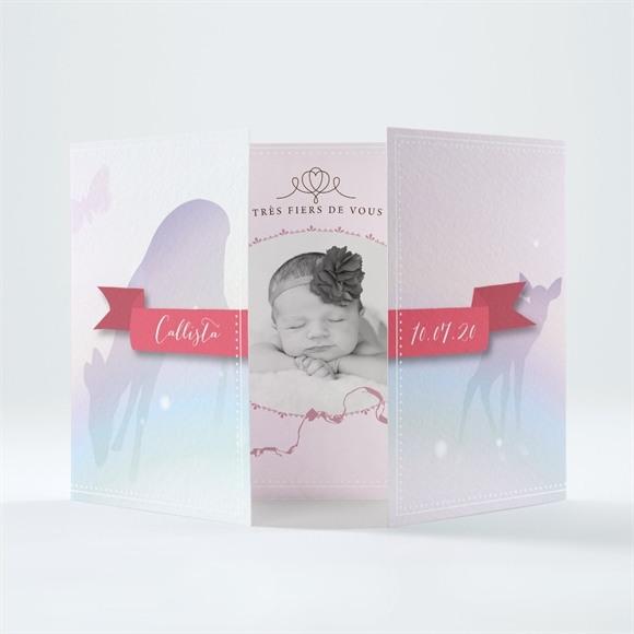 Faire-part naissance Jolie Banderole réf.N70147
