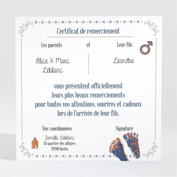 Remerciement naissance Jolis pictogrammes réf.N300436