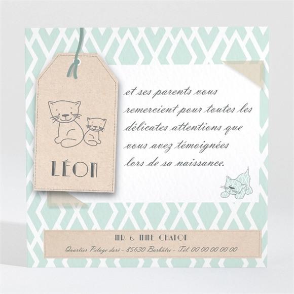 Remerciement naissance Notre Petit Chat réf.N300447