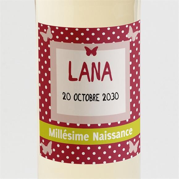 Etiquette de bouteille naissance Cadre Papillon réf.N300599