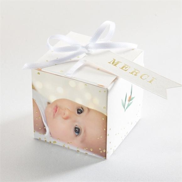 Boîte de dragées baptême Jolie poésie réf.N340183