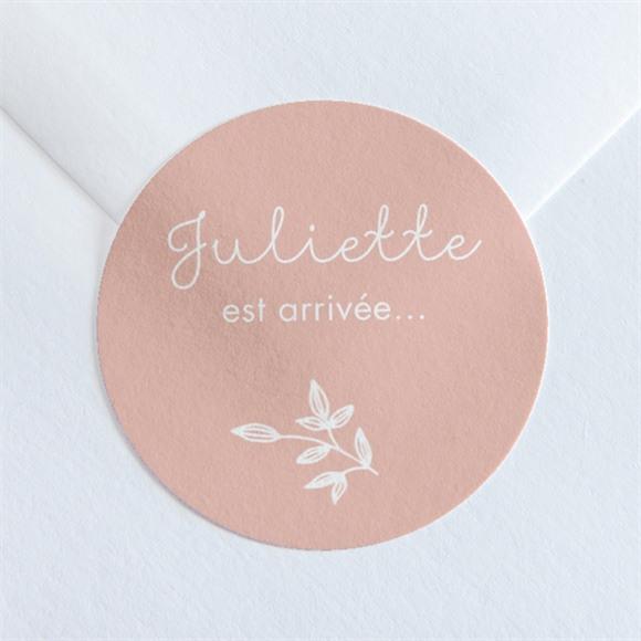 Sticker naissance Simple Cadre et photo réf.N360122