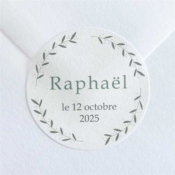 Sticker naissance Grand Frere réf.N360144